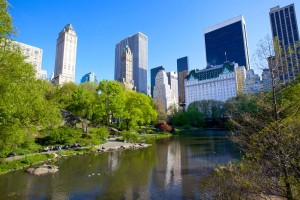 central park small